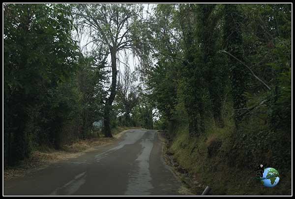 El paisaje va cambiando según ascendemos al Mirador de Orellán