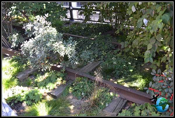Antiguas vías del tren en High Line Elevated Park en New York.