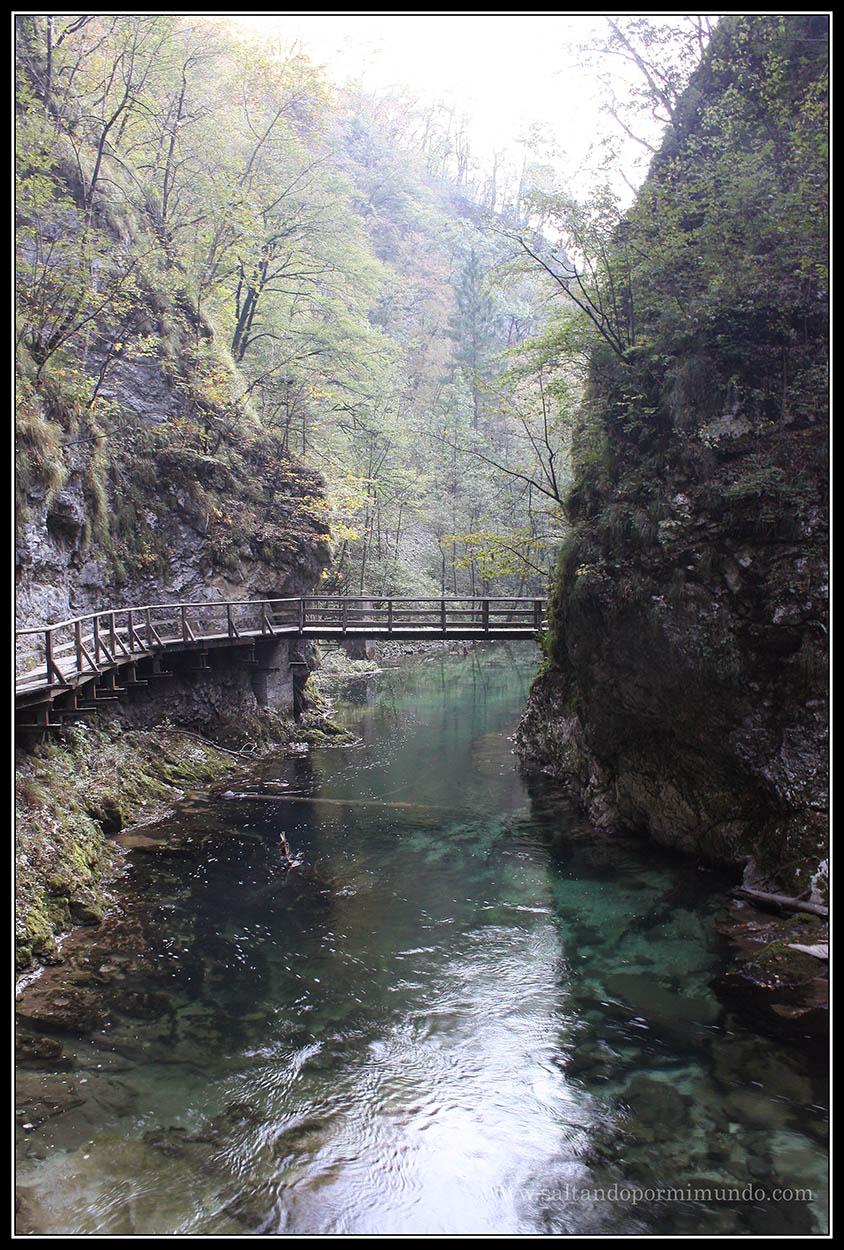 1800 - El río Radovna en la Garganta de Vintgar lun26-9