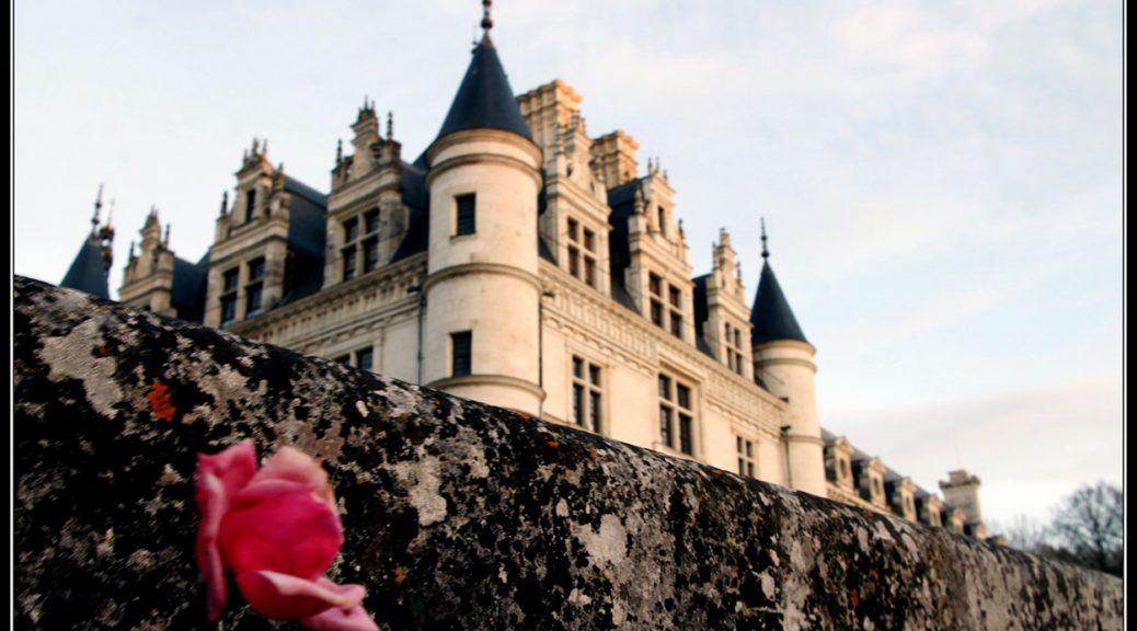 Viaje al Valle del Loira en Navidad. Dia 3. Tours –Chateau Cheverny – Chateau Chambord – Blois – Chateau Chaumunt -Chateau Chenonceau – Tours