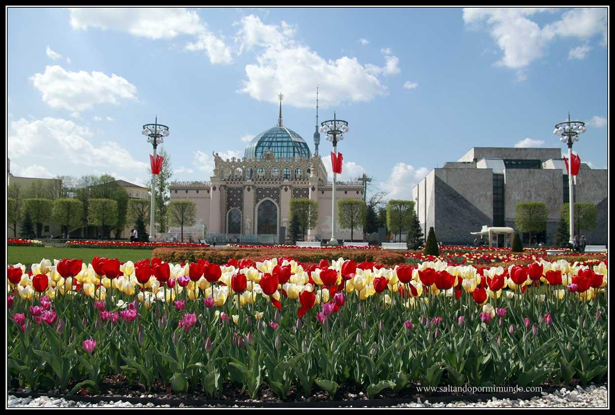 Tulipanes en en el centro de exposiciones Panruso