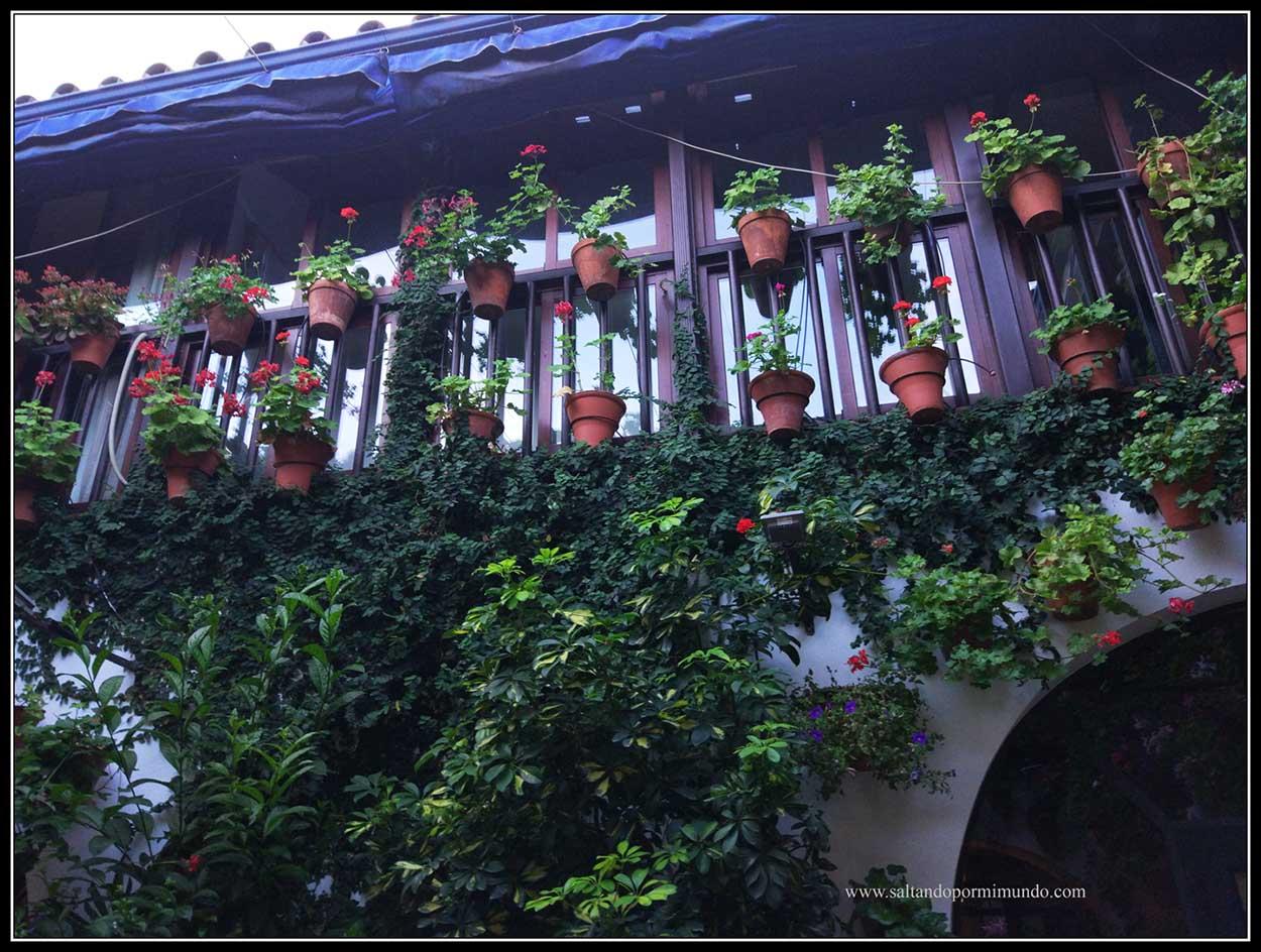 Patios de Córdoba, Patio Ocaña