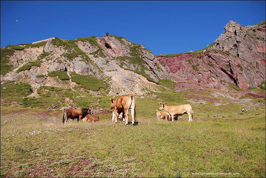 ruta de senderismo por los lagos de Saliencia en Somiedo es una de las rutas más bonitas de senderismo que hacer en Asturias.
