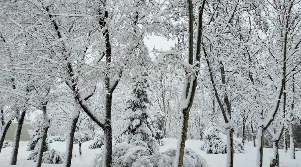 La Gran nevada de Madrid en Enero de 2021, nuestra experiencia